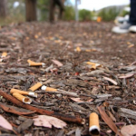 Joint No Smoking and Waste Enforcement Officer at Heath Hospital