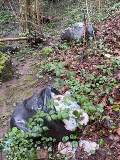 CANCELLED - Trenchard Drive Stream Clearence - Cardiff Rivers Group